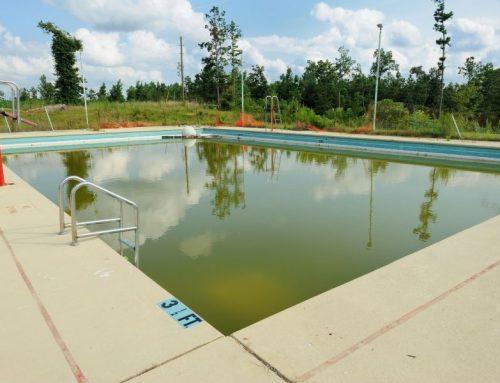 Coque de piscine qui verdit : comment intervenir ?