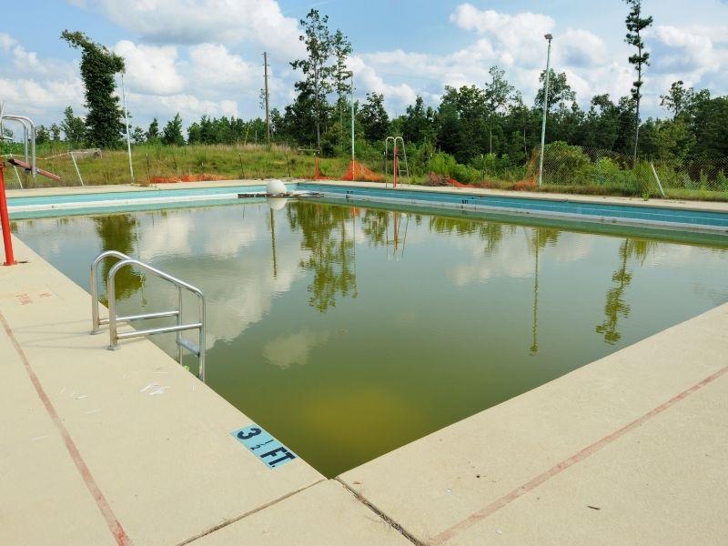 Coque de piscine qui verdit - Algues piscine